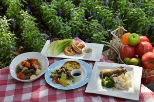 Rodzinny piknik w ogrodzie – jak go zrobić?