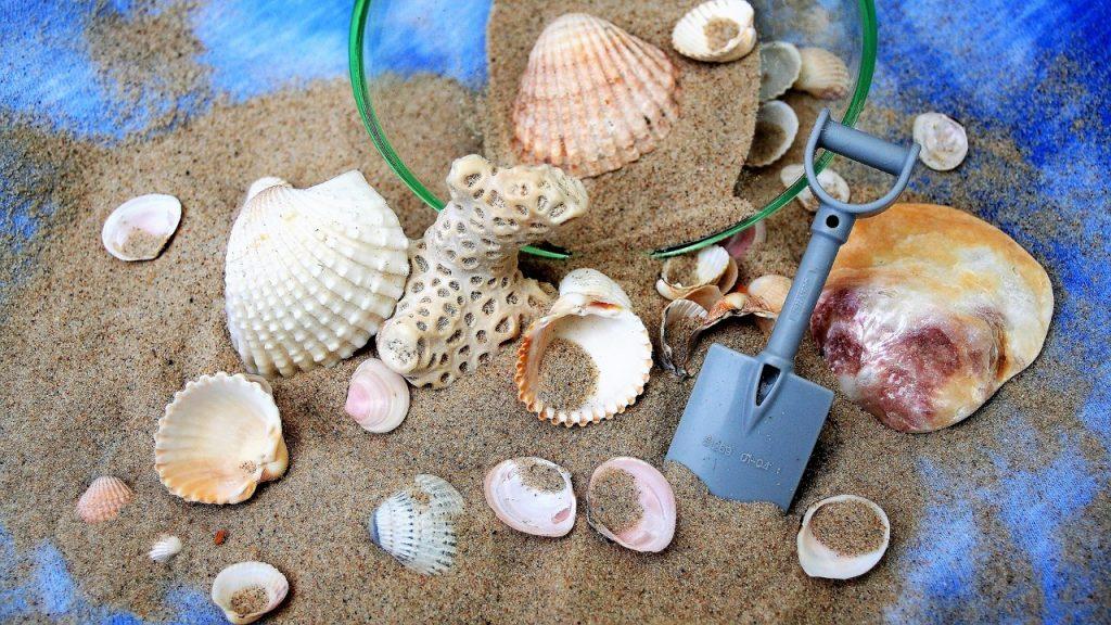 muszelki i piasek